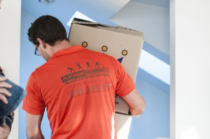 platinum removals removalist carrying box
