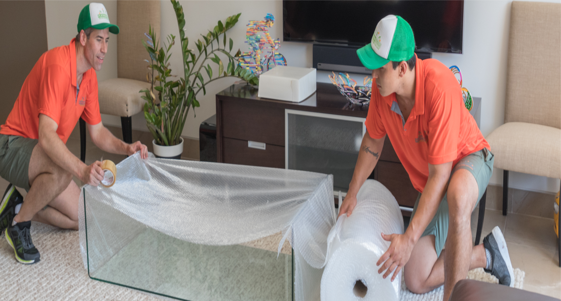 plaintum removals packing services